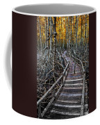 Footpath In Mangrove Forest Coffee Mug by Adrian Evans