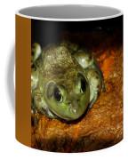 Frog Love Coffee Mug by LeeAnn McLaneGoetz McLaneGoetzStudioLLCcom