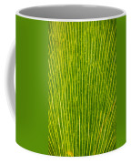 Ginko Tree Leaf Coffee Mug by Steve Gadomski