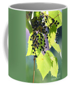 Grapes And Leaves Coffee Mug by Michal Boubin