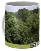 Grave Of Lafayette Meeks Appomattox Virginia Coffee Mug by Teresa Mucha