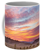 High Park Wildfire Sunset Sky Coffee Mug by James BO  Insogna