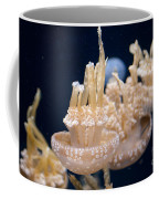 Jellies Coffee Mug by Carol Ailles