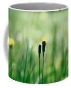 Le Centre De L Attention - Green S0101 Coffee Mug by Variance Collections