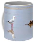 Mirrored Seagull Coffee Mug by Kaye Menner