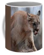 Mountain Lion Coffee Mug by Paul Ward