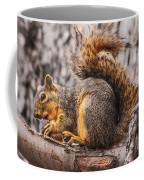 My Nut Coffee Mug by Robert Bales