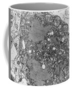 Rabies Virus Coffee Mug by Science Source