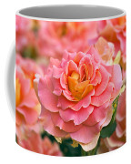 Rosa 'brass Band' Coffee Mug by Alan Detrick and Photo Researchers