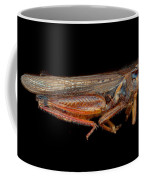 Science - Entomology - The Specimin Coffee Mug by Mike Savad