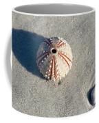 Sea Urchin And Shell Coffee Mug by Kenneth Albin