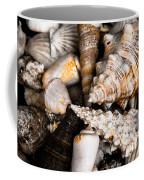 Seashells Coffee Mug by Hakon Soreide