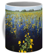 Spring Flood Plains With Wildflowers Coffee Mug by Norbert Rosing