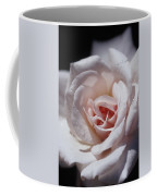 The Delicate Pale Pink Petals Coffee Mug by Jason Edwards