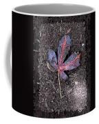 The Maple 5 Coffee Mug by Tim Allen