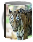 Tiger - Endangered - Wildlife Rescue Coffee Mug by Paul Ward