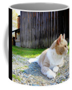 Toby Old Mill Cat Coffee Mug by Sandi OReilly