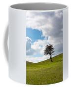 Tree Coffee Mug by Semmick Photo