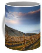 Vineyard Storm Coffee Mug by Mike  Dawson