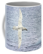 White Nelly Coffee Mug by Tony Beck