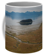 Wild Alaska Coast Coffee Mug by Mike Reid