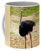 You Look At Me I Look At You Coffee Mug by Patricia Griffin Brett