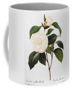 Camellia, 1833 Coffee Mug by Granger