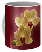 Orchid Coffee Mug by Sandy Keeton
