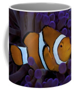 False Ocellaris Clownfish In Its Host Coffee Mug by Terry Moore