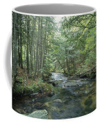 A Woodland View With A Rushing Brook Coffee Mug by Heather Perry