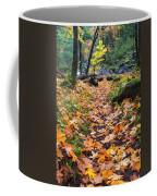 Autumn Path Coffee Mug by Mike  Dawson