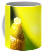 Baby Lemon On Tree Coffee Mug by Ben and Raisa Gertsberg
