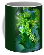 Backyard Garden Series - Young Grapes Coffee Mug by Carol Groenen