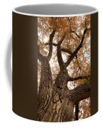 Big Tree Coffee Mug by James BO  Insogna