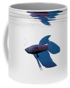 Blue Betta Coffee Mug by Corey Ford