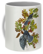 Canada Jay Coffee Mug by John James Audubon