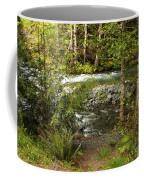 Clear Mountain Stream Coffee Mug by Carol Groenen
