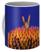 Coneflower Study Coffee Mug by Betty LaRue
