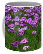 Dreaming Of Purple Daisies  Coffee Mug by Carol Groenen