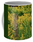 Fence Post7139 Coffee Mug by Michael Peychich