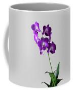 Floral Coffee Mug by Tom Prendergast