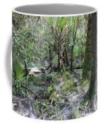 Florida Landscape - Lithia Springs Coffee Mug by Carol Groenen