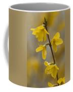 Golden Forsythia Coffee Mug by Kathy Clark