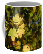 Golden Morning Coffee Mug by Trish Hale