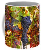 Grapes On Vine In Vineyards Coffee Mug by Garry Gay
