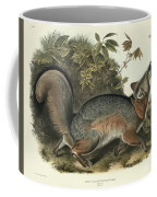 Grey Fox Coffee Mug by John James Audubon