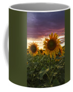 Happiness Is A Field Of Sunflowers Coffee Mug by Debra and Dave Vanderlaan