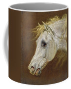 Head Of A Grey Arabian Horse  Coffee Mug by Martin Theodore Ward