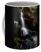 Hidden Falls Coffee Mug by Mike  Dawson