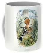 Hoopoe Coffee Mug by Edouard Travies